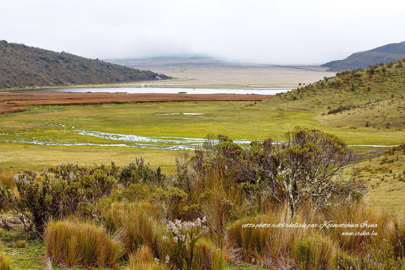 À la découverte de la Cordillère des Andes