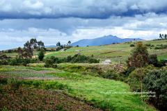 Vie rurale en bleu et vert
