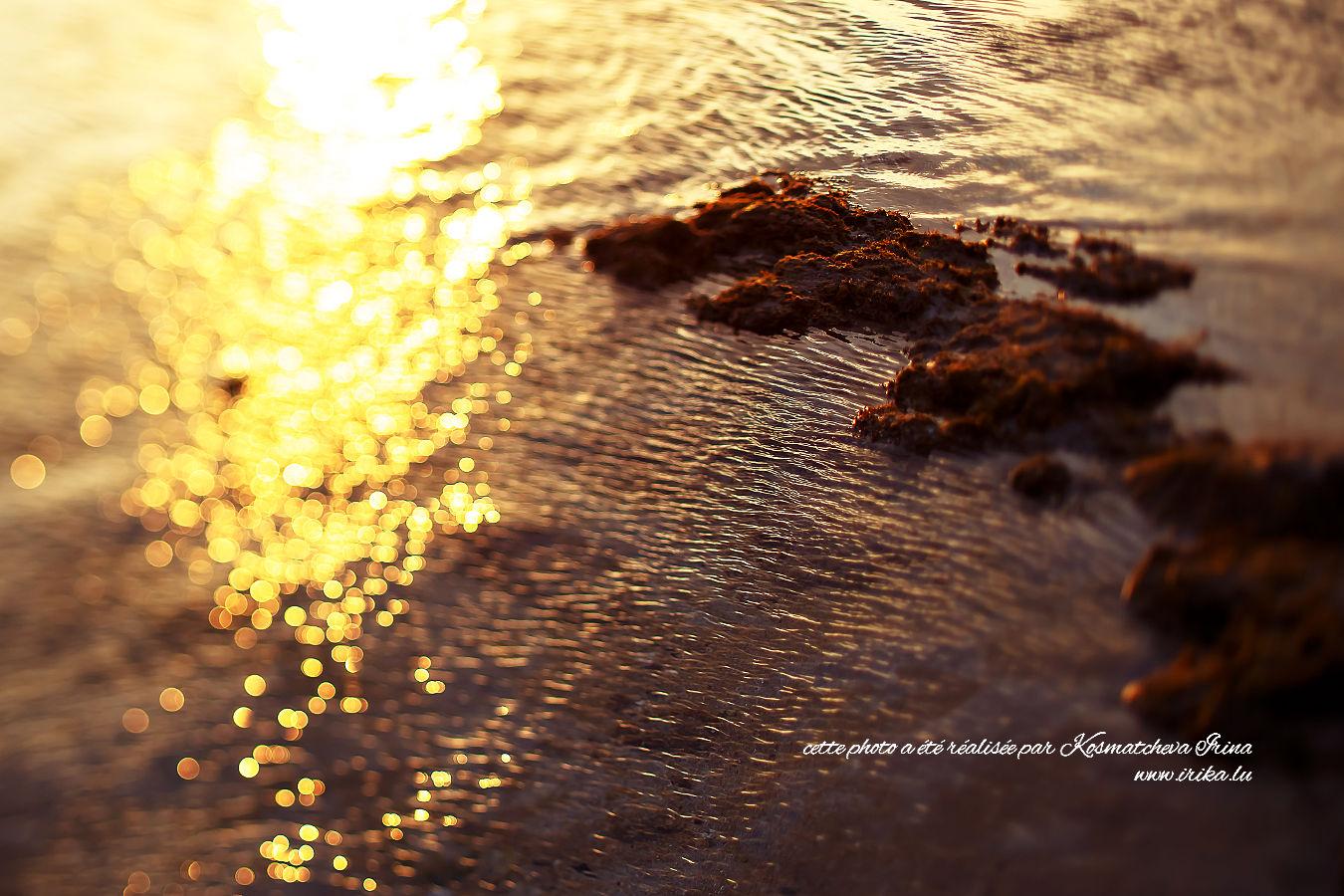 Soirée à la plage