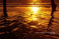L'eau dorée