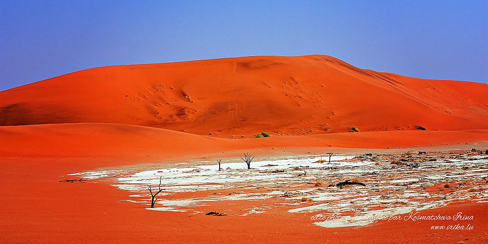 Paysage rouge aride