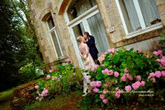 Ancienne façade et hortensias roses