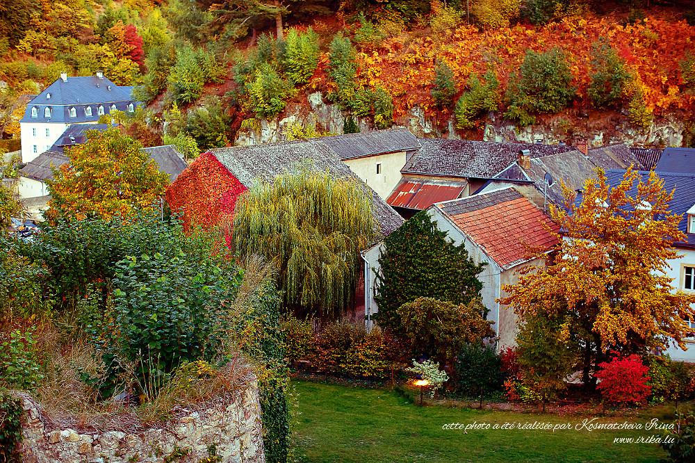 Feuillage coloré du mois d'octobre