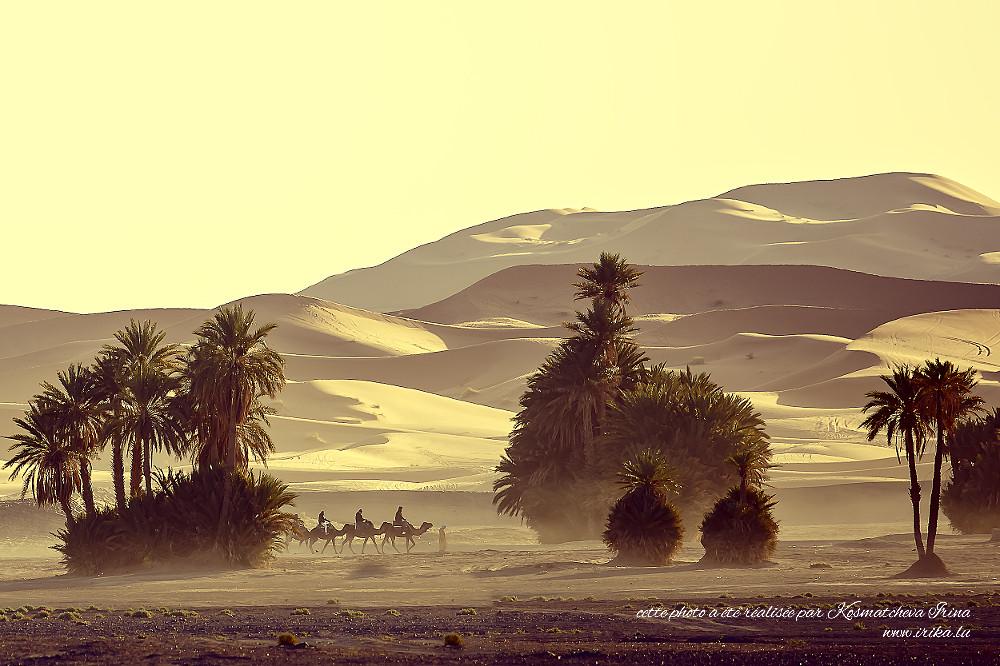 Caravane-dans-les-dunes