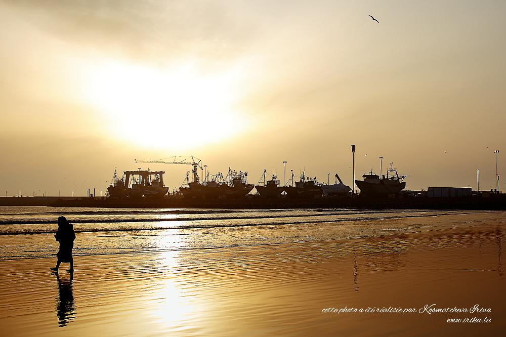 Dans-le-port-dEssaouira