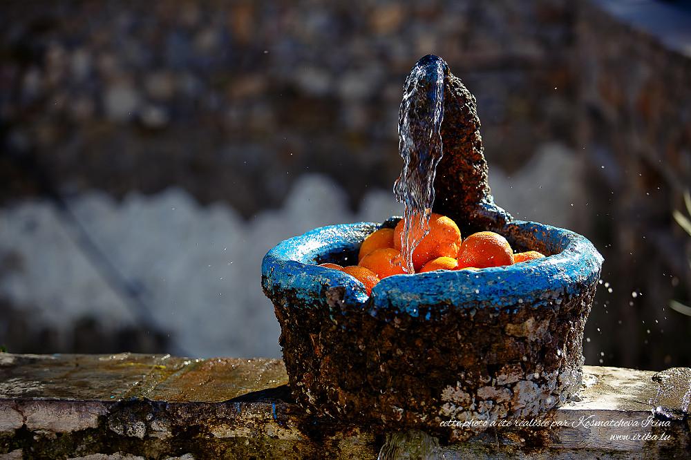 Oranges-mures