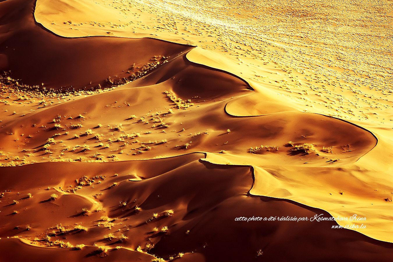 Vagues de désert