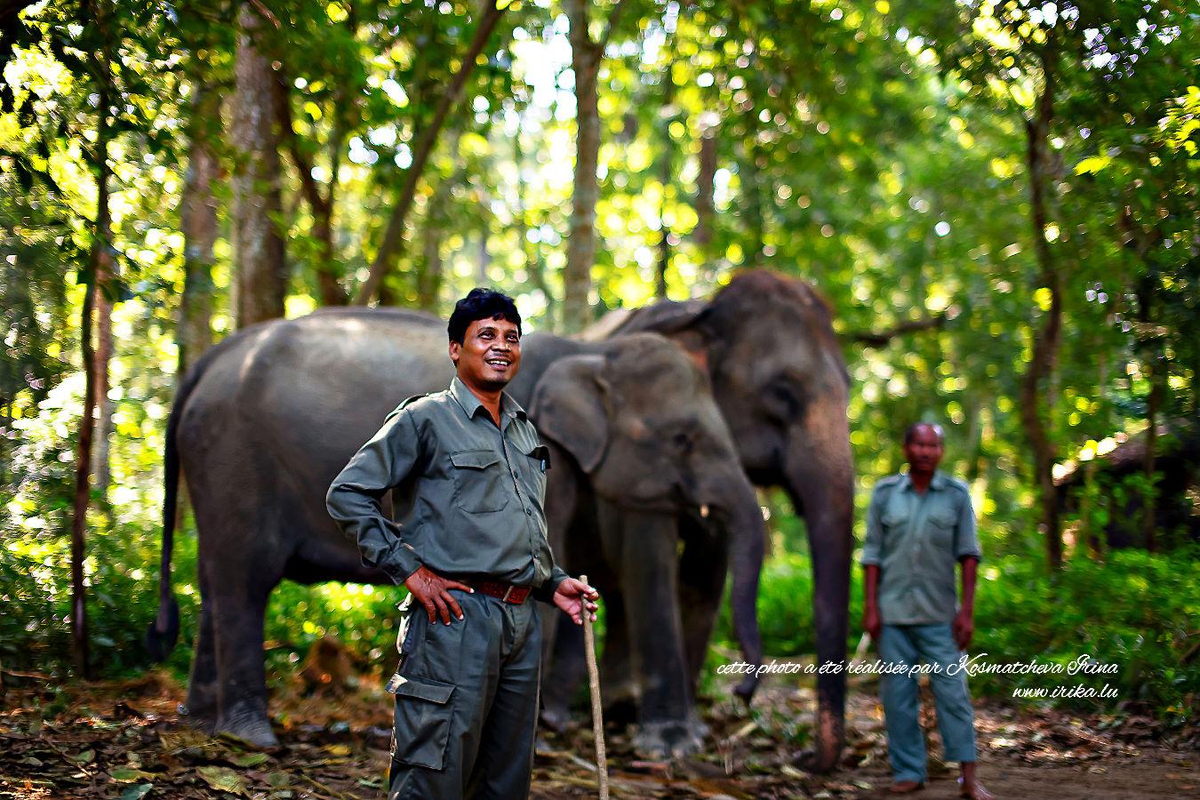 Dresseurs d'éléphants