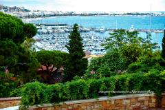 Vue sur le port de Cannes