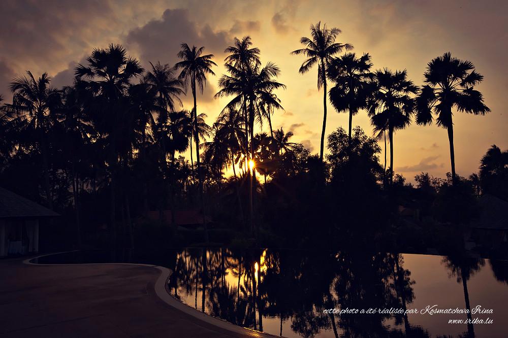 Soirée à Koh Samui