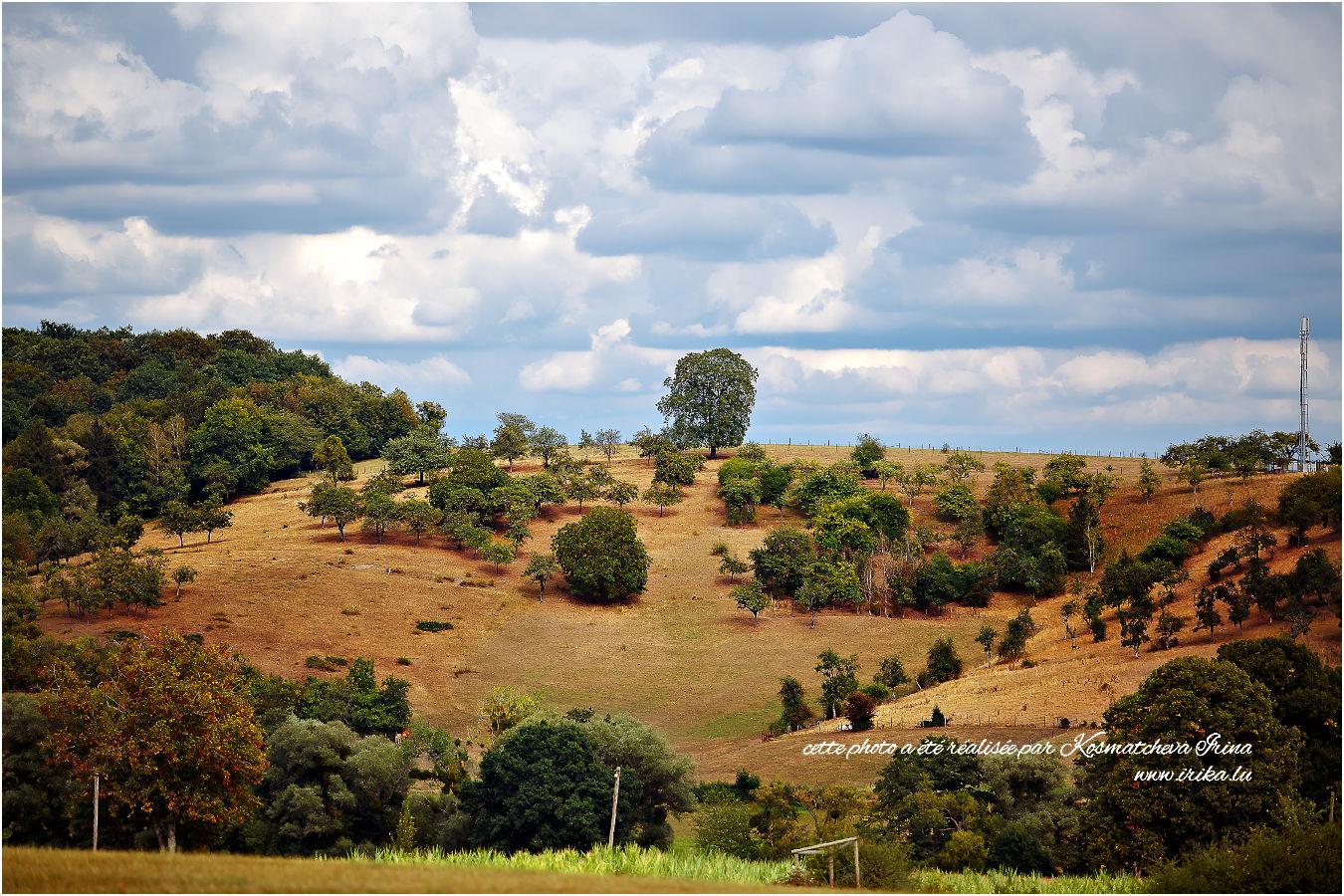 Vue sur une colline près de Bous